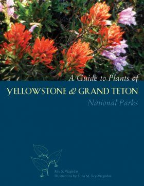 A Guide to Plants of Yellowstone and Grand Teton National Parks