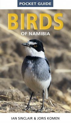 Struik Pocket Guide: Birds of Namibia