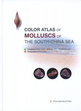 Color Atlas of Molluscs of The South China Sea