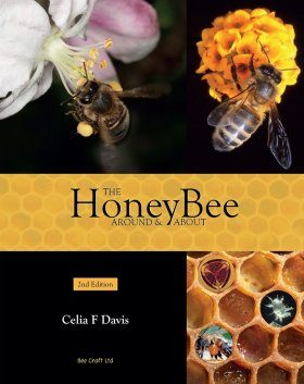 The Honey Bee Around & About