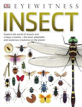 Eyewitness Guide: Insect