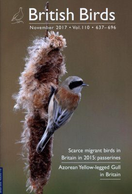 British Birds Report on Scarce Migrant Birds in Britain in 2015, Part 2: Passerines