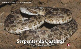 Serpentes da Caatinga: Guia Ilustrado [Snakes of Caatinga: Illustrated Guide]