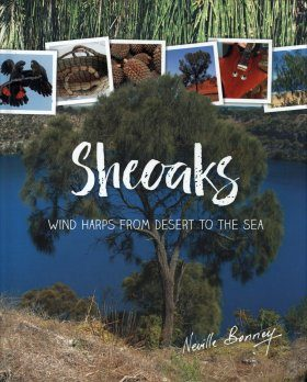 Sheoaks: Wind Harps from Desert to the Sea