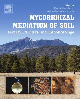 Mycorrhizal Mediation of Soil
