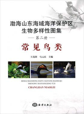 Atlas of Biodiversity in Shandong and Bohai Marine Protected Areas: Common Birds [Chinese]