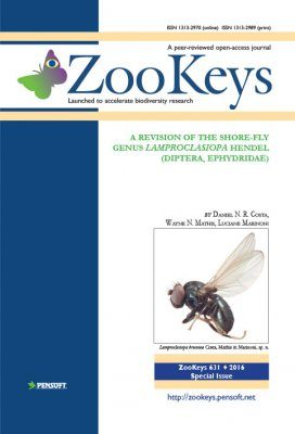 ZooKeys 631: A Revision of the Shore-Fly Genus Lamproclasiopa Hendel (Diptera, Ephydridae)