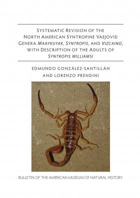 Revision of the North American Syntropine Vaejovid Scorpion Genera Maaykuyak, Syntropis, and Vizcaino, with Description of the Adults of Syntropis williamsi
