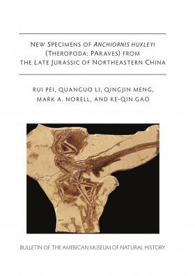 New Specimens of Anchiornis huxleyi (Theropoda, Paraves) from the Late Jurassic of Northeastern China