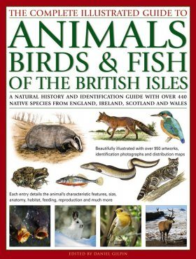 The Complete Illustrated Guide to of Animals, Birds & Fish of the British Isles