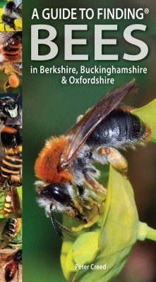 A Guide to Finding Bees in Berkshire, Buckinghamshire & Oxfordshire