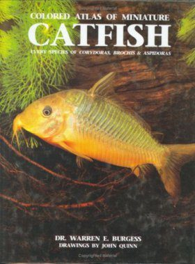 Coloured Atlas of Miniature Catfish