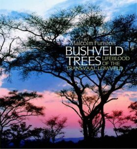 Bushveld Trees: Lifeblood of the Transvaal Lowveld