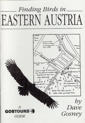 Finding Birds in Eastern Austria