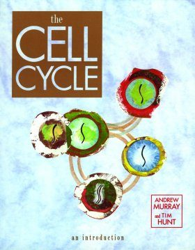 Cell Cycle: An Introduction