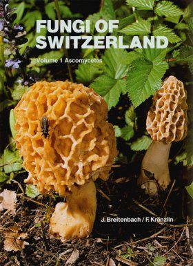 Fungi of Switzerland, Volume 1: Ascomycetes