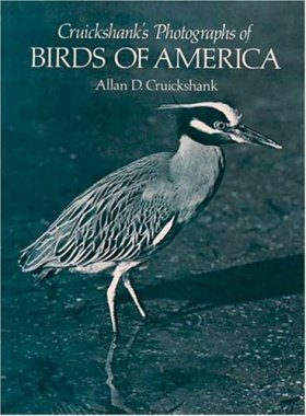 Photographs of Birds of America