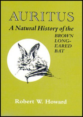Auritus: A Natural History of the Brown Long-Eared Bat