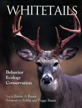 Whitetails: Behaviour, Ecology, and Conservation