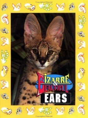 Bizarre and Beautiful Ears