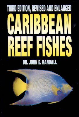 Caribbean Reef Fishes