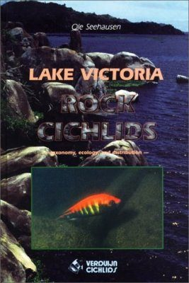 Lake Victoria Rock Cichlids