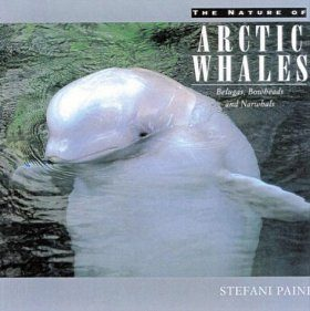 The Nature of Arctic Whales
