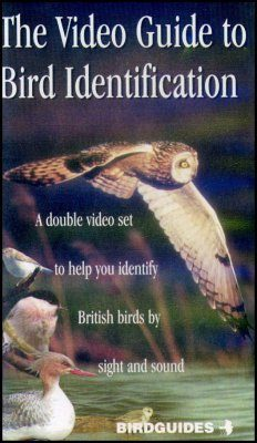 The Video Guide to Bird Identification