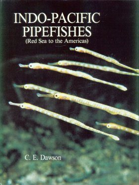 Indo-Pacific Pipefishes