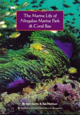 The Marine Life of Ningaloo Marine Park and Coral Bay