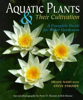 Aquatic Plants and their Cultivation