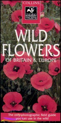 Collins Wildlife Trust Guide: Wild Flowers of Britain and Europe