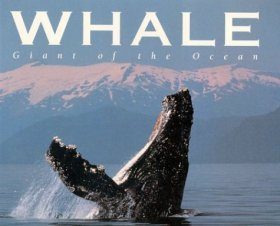 Whale: Giant of the Ocean