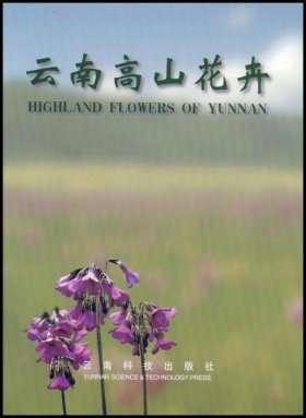 Highland Flowers of Yunnan