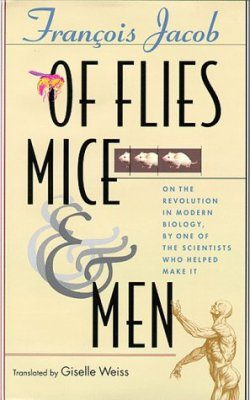 Of Flies, Mice & Men