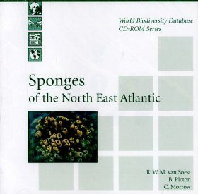Sponges of the North East Atlantic