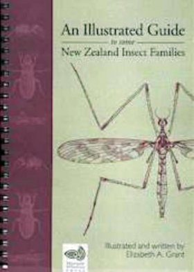 An Illustrated Guide to some New Zealand Insect Families
