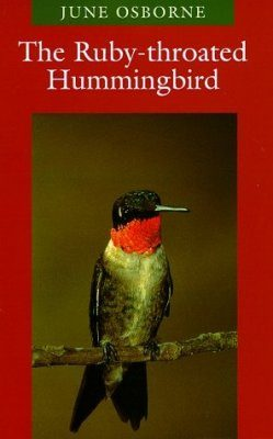 The Ruby-Throated Hummingbird
