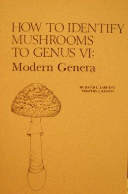 How to Identify Mushrooms to Genera VI: Modern Genera