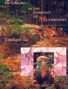In the Company of Mushrooms