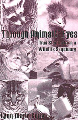 Through Animals' Eyes