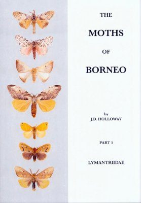 The Moths of Borneo, Part 5