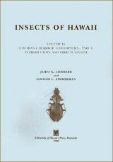 Insects of Hawai'i Volume 16: Coleoptera: Carabidae Image