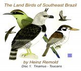 The Land Birds of Southeast Brazil, Disc 1: Non-Oscines
