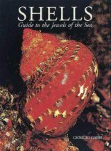 Shells: A Guide to the Jewels of the Sea