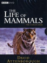 The Life of Mammals - DVD (Region 2) Image