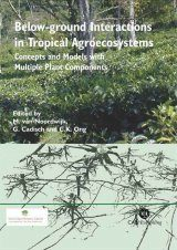Below Ground Interactions in Tropical Agroecosystems