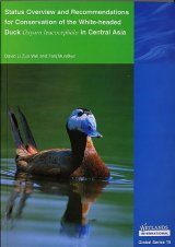 Status Overview and Recommendations for Conservation of the White-headed Duck Oxyura leucocephala in Central Asia Image