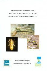 Preliminary Keys for the Identification of the Australian Gomphides (Odonata)