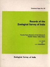 Termite Fauna (Isoptera) of the Andaman and Nicobar Islands, Indian Ocean